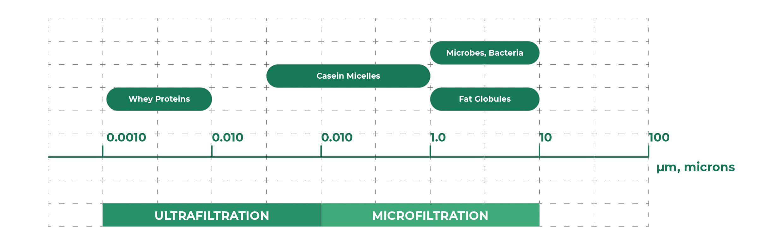 Relative species dimensions for milk